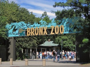 Bronx Zoo - April 10, 2021